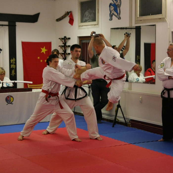 Bruchtest Taekwondo