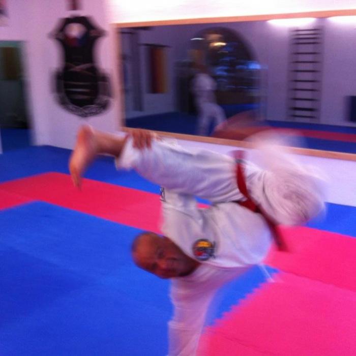 V-Kick Taekwondo